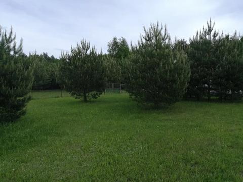 Продам участок в деревне Захарово