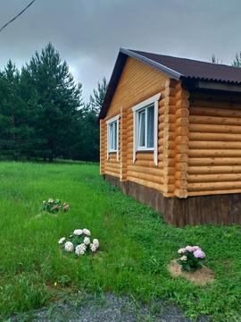 Два деревянных дома на сосновом участке 15 сот