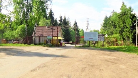 12 соток Дмитровское шоссе 35 км от МКАД, тис Гранат