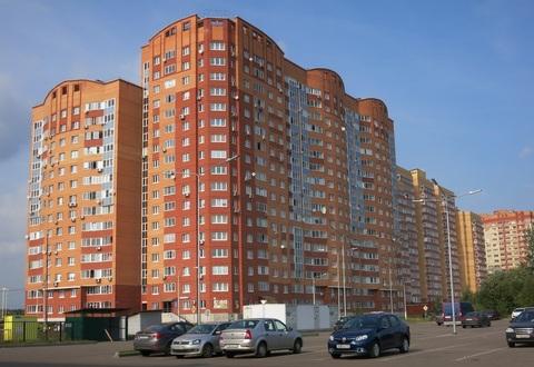 Шикарная квартира Молодежная д.8.