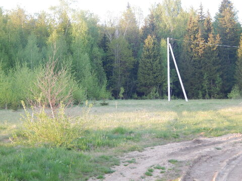 Участок 20 соток в п. Дорохово около леса
