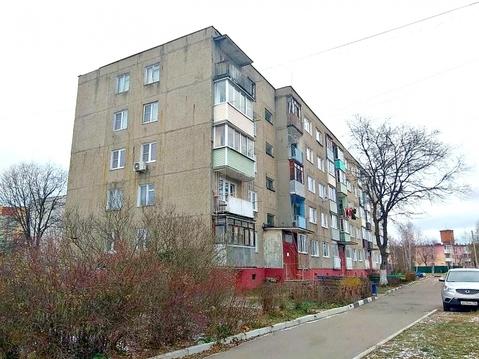 1 комнатная квартира Ямкино с, Центральная усадьба ул, 8