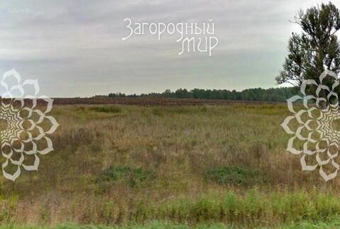 Ярославское ш, 70 км от МКАД, Соснино