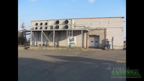 Продажа производственного помещения, Сухарево, Мытищинский район