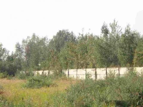 Пром. участок 3,6 Га с ж/д веткой в г.Электроугли в 29 км от МКАД