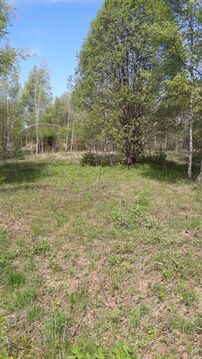 Земельный участок в обжитом СНТ Нарофоминский раойн