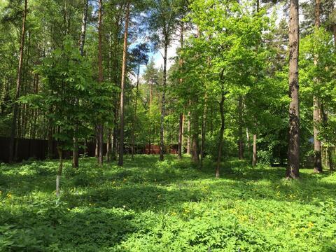 Лесной участок 21 сотка д. Шмеленки ИЖС