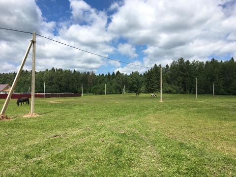 Шикарный участок в Дулепово Солнечногорский район