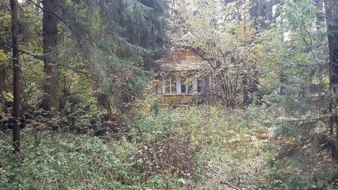 Продается земельный участок в микрорайоне Сходня, Московской области,