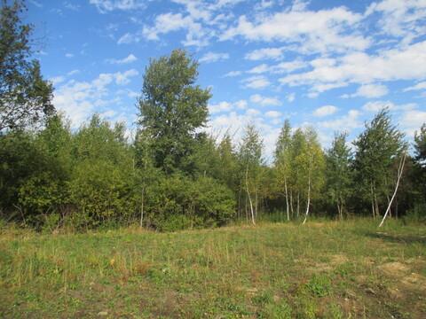 Продам земельный участок в деревне Ширяево, ул. Березки