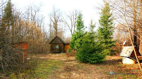 Летний домик в лесу в Волоколамском гор.округе Московской области