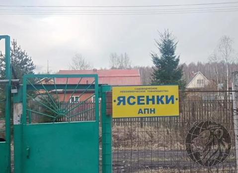 Продаётся участок 6 соток в окружении лесного массива.