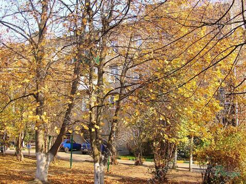 Московская область, Рузский городской округ, рабочий поселок Тучково, .