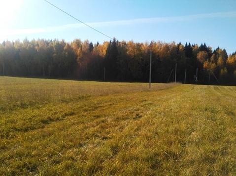 Земельный участок 6 соток в д. Товарково, Рузский городской округ