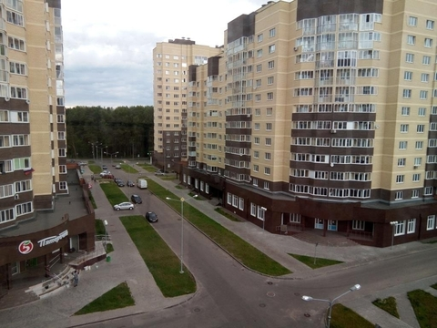 Ногинск, 1-но комнатная квартира, Дмитрия  Михайлова д.4, 2520000 руб.