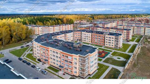 Московская область, городской округ Истра, деревня Высоково, .