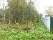 Продам земельный участок в СНТ «Пестриково-2» Можайского района, 200000 руб.