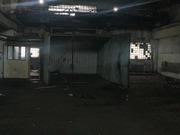 Сдается помещение под автосервис, 159000 руб.