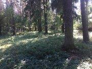 Участок в Голицыно, 2100000 руб.