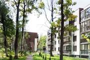 Квартира в лесу Подмосковья