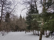Участок 6 соток в СНТ Орбита, Климовск, ул. Школьная., 1590000 руб.