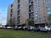 1-комнатная квартира в Новопеределкино