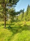 Наро-Фоминск, СНТ Изолятор. 6 соток, 800000 руб.
