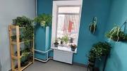 Люберцы, 1-но комнатная квартира, ул. Камова д.62, 6500000 руб.